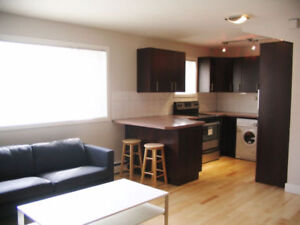 Downtown Furnished Studio Unit - Wifi & Cable included