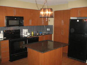 FURNISHED EXECUTIVE CONDO (SQ 1 ) --- SHORT/LONG TERM RENTAL