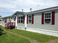 8 Burgundy, Moncton in Pine Tree