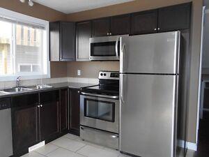#4272-2 Bedroom Lower Level $1095 Utilities Included June 1st