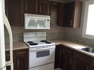 9529-79ave- Single Family Home-$99-DD