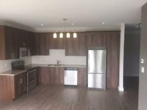1 bedroom apartment for Mature Tenant at Shiraz Gardens