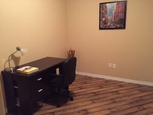 Beautiful downtown apartment for rent starting Dec. 1 Regina Regina Area image 9