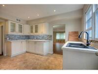 Renovation and New Construction Services