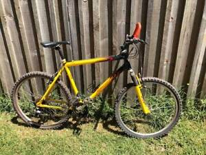 Apollo Mens Mountain Bike Comp