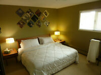 Central Bright Furnished Suite, Utilities Included