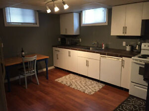 2BR Apartment - New Suite