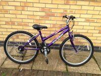 Raleigh Krush 24 bike