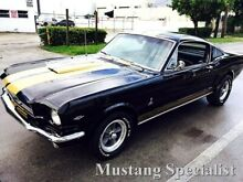 FORD Mustang Fastback 289 Shelby Tribute Cambio Man 4 Marce