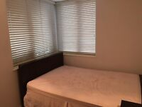 Flatshare in nice apartment centrally located zone 1 for dog friendly