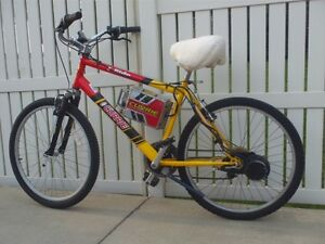 Currie Electric Assist Schwinn bike - Model E156