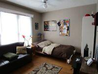 1 Huge room in Great Student House