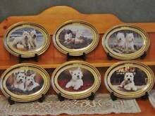 West Highland Terrier collectable plates Fennell Bay Lake Macquarie Area Preview