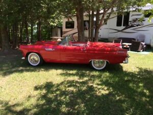 For Sale Classic 55 T Bird