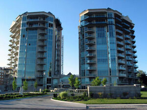 Windsor's Choice Premium Condo Cleaners FLAT RATE only $49.99 Windsor Region Ontario image 1