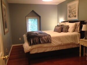 Fully Furnished All Inclusive Downtown Executive Rental London Ontario image 5