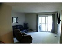 Clean, Spacious 2 Bdrm Condo - Central Barrie
