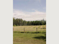 RURAL LAND/ VACANT LOT
