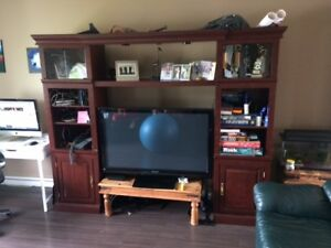 Large entertainment unit