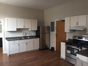 BEAUTIFUL DOWNTOWN APARTMENT FOR RENT