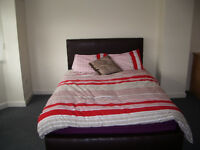 Clean Comfortable En-suite Room in Great Location