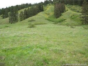 Lot#31, 11 acres of valley view property