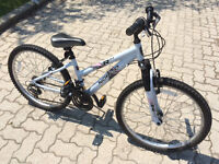 Norco R24 Bicycle