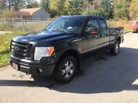 2010 Ford F-150 FX4 Muskoka Ontario Preview