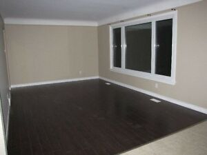 Modern three bedroom suite *Available April 1st*