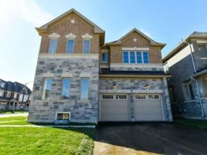 Brand New * Corner Det,Priced To Sell! * Creditview/Mayfield
