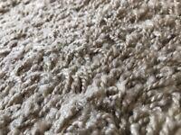 XL modern shaggy rug