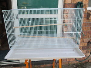 Brand New Flight Cage & Baby Budgie    (  D 601 ) Narara Gosford Area Preview