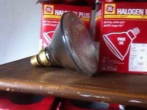 15 ampoules Halogène plus