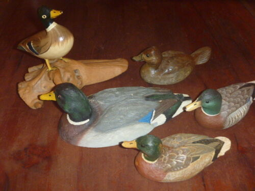 Mallard Hand Painted Duck Collection of 5 Some Signed