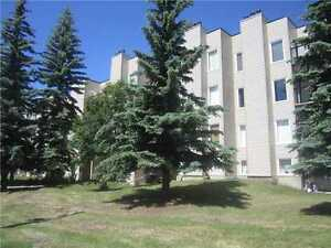 HUGE 1 BEDROOM PLUS DEN CONDO IN LA PERLE IN WEST EDMONTON.