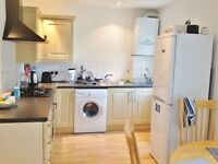 Lovely and spacious 3 bedroom apartment in Globe House, Kilburn, London NW6
