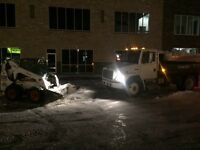 Snow hauling and removal