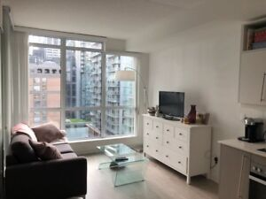 1 Bed Condo for Rent - 30 Nelson - Nov 1st!  Amazing location!