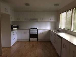 Castle Hill central 3 br house for rent -5 min walk everything Castle Hill The Hills District Preview