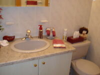 GREY SINK/FAUCET, CABINET AND TOILET FOR POWDER ROOM
