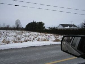 VERY GOOD BUILDING LOT IN ONTARIO. I CAN FINANCE
