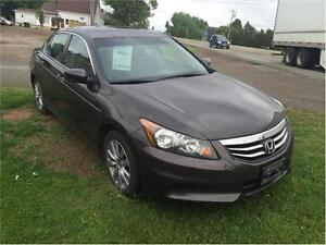 2011 Honda Accord Sedan EX-L  MUST SEE BEAUTIFUL CAR FULLY LOADE