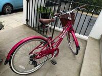 2020 Pinnacle 24 Inch 2020 Kids Bike 24 Inch wheel