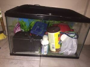 10 gallon LED fish tank with supplies