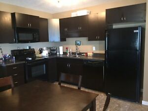 Harbour Landing Condo (SAGE) with Garage & 1 Parking Spot Regina Regina Area image 4