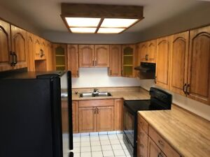 Spacious 3 Bedroom Downtown Townhome