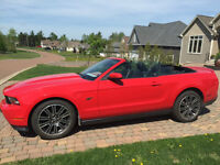 2010 Ford Mustang GT Convertible Mint Condition