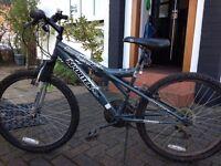 Childs Mountain Bike - 21 Inch with Kickstand