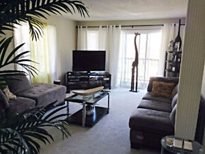 Room for rent in Clayton Park area. All inclusive!