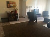 Big Furnished Room with private Bathroom. Monthly or Weekly